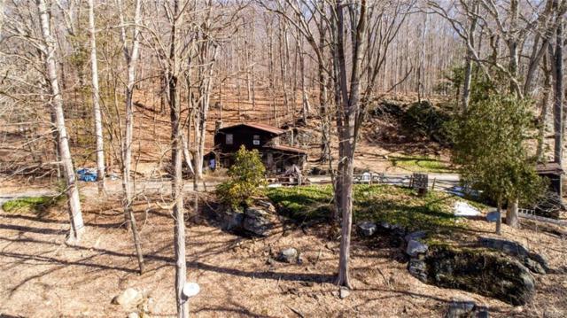 74 Watermelon Hill Road, Mahopac, NY 10541 (MLS #4813627) :: Mark Boyland Real Estate Team