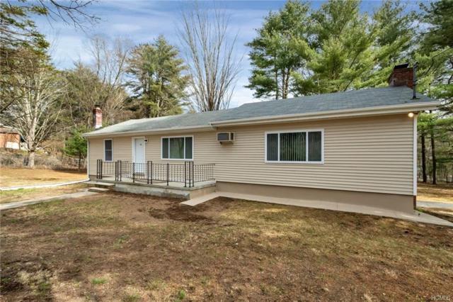 14 Andrew Paye Road, Pond Eddy, NY 12770 (MLS #4813812) :: Mark Boyland Real Estate Team