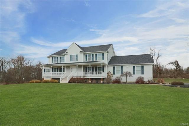 46 South View Court, Poughkeepsie, NY 12603 (MLS #4813878) :: Mark Boyland Real Estate Team