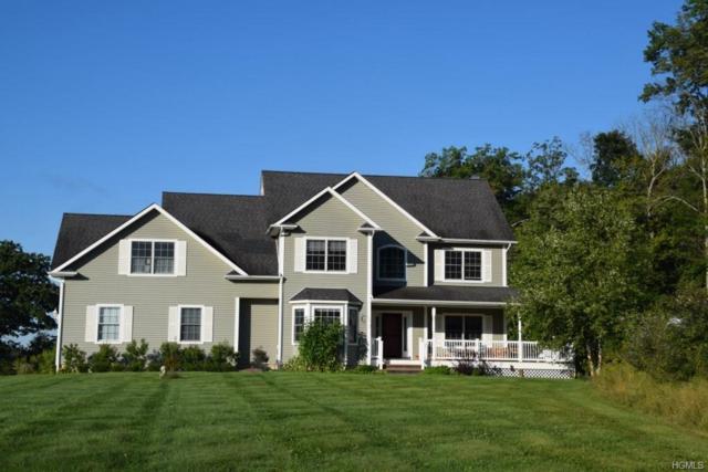 28 Scenic Ridge Road, New Paltz, NY 12561 (MLS #4813956) :: Mark Boyland Real Estate Team