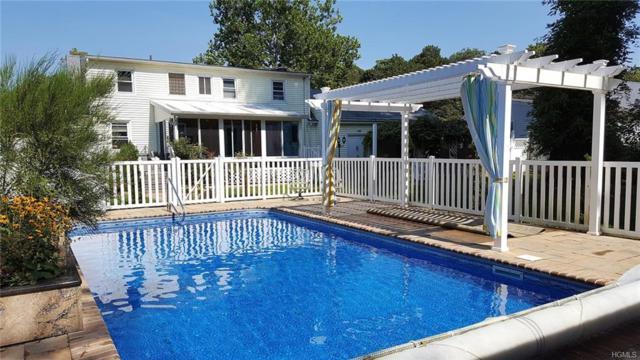 16 Terwilliger Road, Hyde Park, NY 12538 (MLS #4814026) :: Mark Boyland Real Estate Team