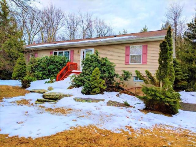 141 Wild Turnpike, Rock Hill, NY 12775 (MLS #4814030) :: Mark Boyland Real Estate Team