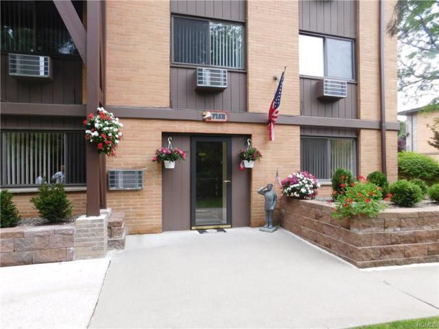 10 Oakwood Terrace #77, New Windsor, NY 12553 (MLS #4814052) :: Mark Boyland Real Estate Team