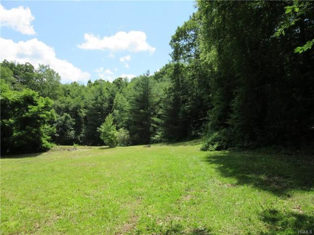 290 Hammond Hill Road, Dover Plains, NY 12522 (MLS #4814061) :: Mark Boyland Real Estate Team