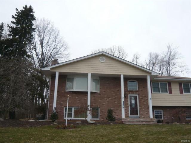 43 Gottlieb Drive, Pearl River, NY 10965 (MLS #4814178) :: William Raveis Baer & McIntosh