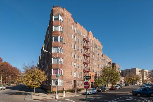 601 N Pelham Parkway #218, Bronx, NY 10467 (MLS #4814266) :: Mark Boyland Real Estate Team
