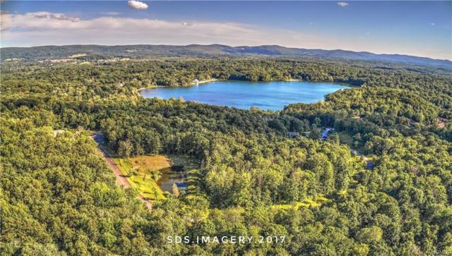 Lot #3 Lake Drive, Hopewell Junction, NY 12533 (MLS #4814404) :: Mark Boyland Real Estate Team