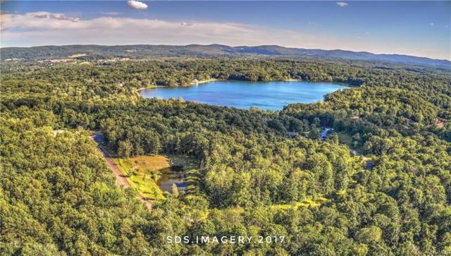 Lot #8 Lake Drive, Hopewell Junction, NY 12533 (MLS #4814406) :: Mark Boyland Real Estate Team