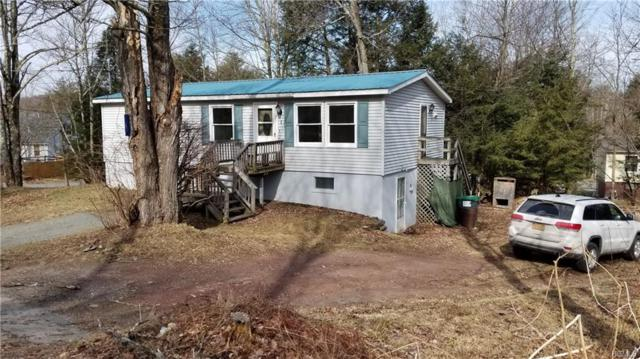 1 Morris Road, Mountain Dale, NY 12763 (MLS #4814532) :: Mark Boyland Real Estate Team