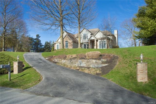 87 Dakota Drive, Hopewell Junction, NY 12533 (MLS #4814589) :: Mark Boyland Real Estate Team