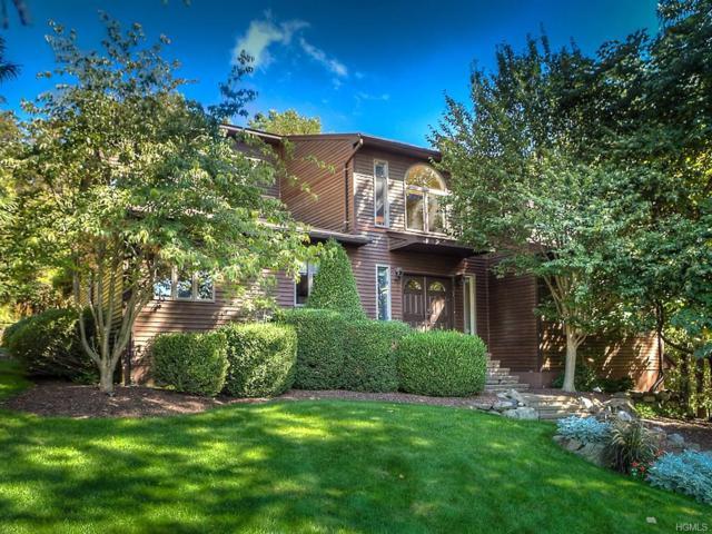 126 Pine Hill Road, Chester, NY 10918 (MLS #4814869) :: Mark Boyland Real Estate Team