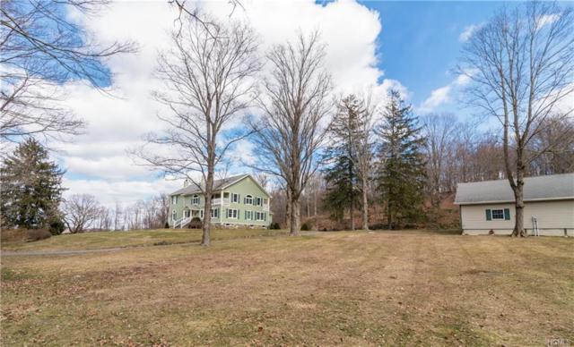 9 Birch Hill Road, Pawling, NY 12564 (MLS #4814926) :: Mark Boyland Real Estate Team