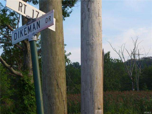 20 Dikeman Drive, Goshen, NY 10924 (MLS #4815066) :: William Raveis Baer & McIntosh