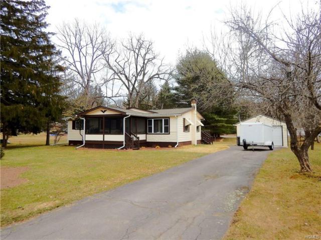 23 3rd Street, Narrowsburg, NY 12764 (MLS #4815070) :: Mark Boyland Real Estate Team