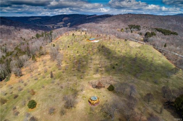 640 Butts Hollow Road, Dover Plains, NY 12522 (MLS #4815095) :: Mark Boyland Real Estate Team