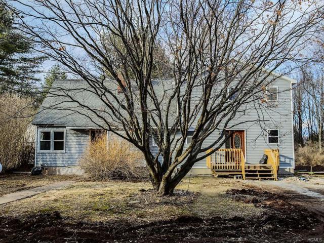 8 Johnny, Greenfield Park, NY 12435 (MLS #4815125) :: Mark Boyland Real Estate Team