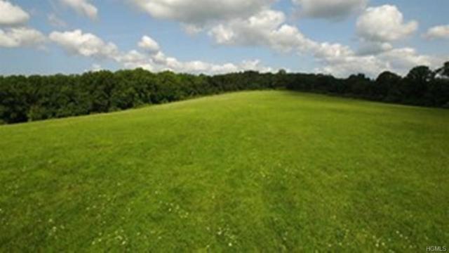 37 S Quaker Hill Road, Pawling, NY 12564 (MLS #4815139) :: Mark Boyland Real Estate Team