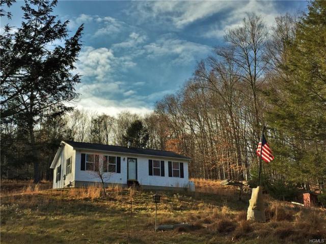 5217 Rt 55, Grahamsville, NY 12740 (MLS #4815163) :: Mark Boyland Real Estate Team