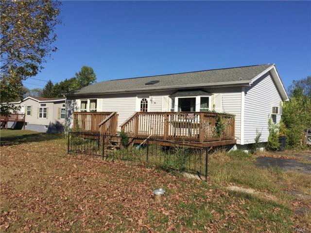 56 Willow Street, Pine Plains, NY 12567 (MLS #4815226) :: Mark Boyland Real Estate Team