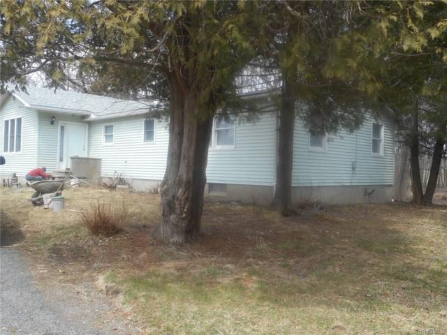 2654 County Route 1, Port Jervis, NY 12771 (MLS #4815288) :: Mark Boyland Real Estate Team