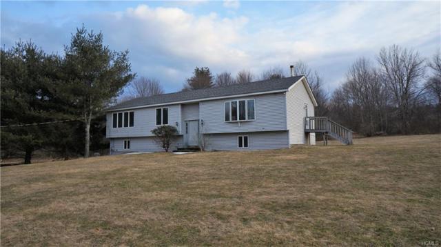 44 Steiglitz Road, Liberty, NY 12754 (MLS #4815419) :: Mark Boyland Real Estate Team