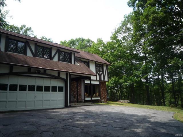 124 Dug Road, Chester, NY 10918 (MLS #4815444) :: Mark Boyland Real Estate Team