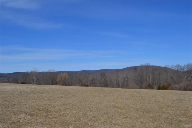 Cricket Hill Road, Dover Plains, NY 12522 (MLS #4815515) :: Mark Boyland Real Estate Team