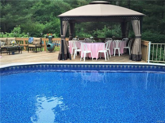 27 Blueberry, Stormville, NY 12582 (MLS #4815554) :: Mark Boyland Real Estate Team