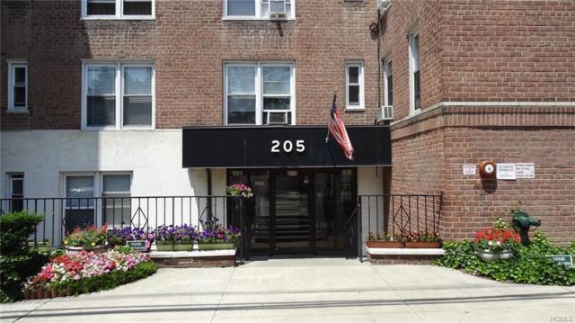 205 E 238 Street 1J, Bronx, NY 10470 (MLS #4815590) :: Mark Boyland Real Estate Team