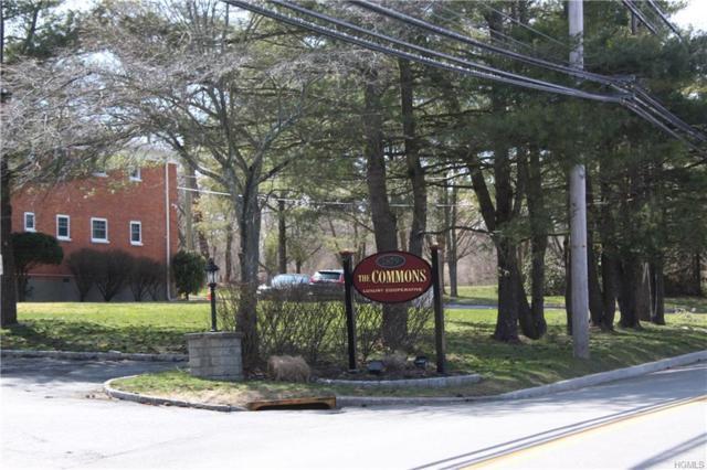 1879 Crompond Road D-20, Peekskill, NY 10566 (MLS #4815639) :: William Raveis Legends Realty Group