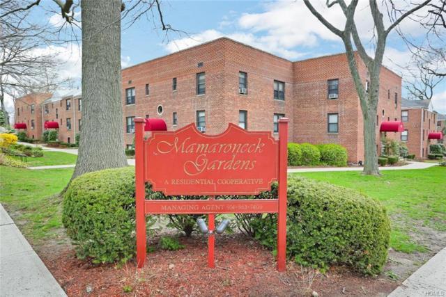 322 Richbell Road B2, Mamaroneck, NY 10543 (MLS #4815681) :: Stevens Realty Group