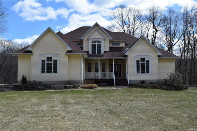 330 Leetown Road, Stormville, NY 12582 (MLS #4815726) :: Mark Boyland Real Estate Team