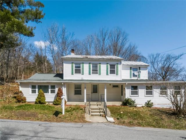 759 Salisbury Turnpike, Rhinebeck, NY 12572 (MLS #4815878) :: Michael Edmond Team at Keller Williams NY Realty