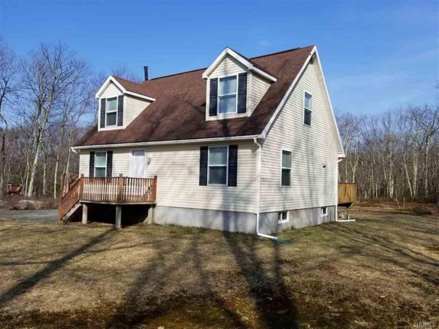 244 County Rd 56, Wurtsboro, NY 12790 (MLS #4815973) :: Mark Boyland Real Estate Team