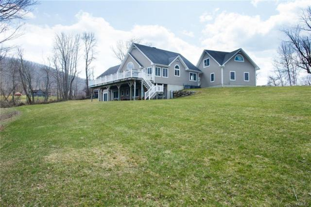 4 Davis Road, Wingdale, NY 12594 (MLS #4816034) :: Mark Boyland Real Estate Team
