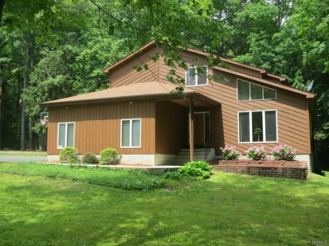 113 Broadway, Hopewell Junction, NY 12533 (MLS #4816064) :: Mark Boyland Real Estate Team