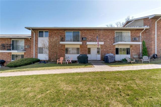 675 Route 6 E7, Mahopac, NY 10541 (MLS #4816147) :: Mark Boyland Real Estate Team