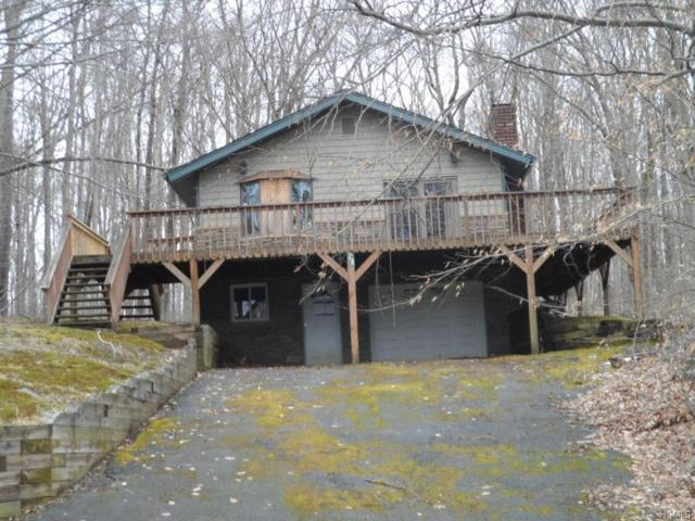 28 Starlight Drive, Monticello, NY 12701 (MLS #4816183) :: Mark Boyland Real Estate Team