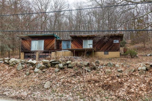 486 Stormville Mountain Road, Stormville, NY 12582 (MLS #4816236) :: Mark Boyland Real Estate Team