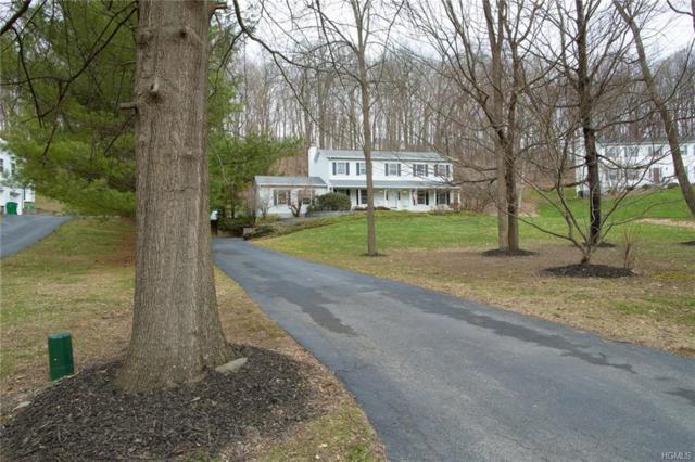 12 Mockingbird Court, Hopewell Junction, NY 12533 (MLS #4816247) :: Mark Boyland Real Estate Team