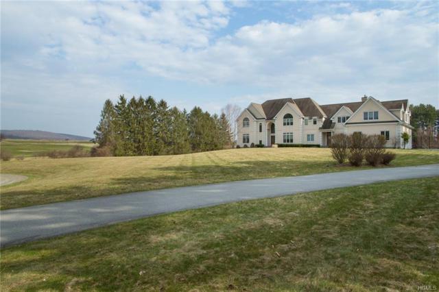 18 Trinity Way, Lagrangeville, NY 12540 (MLS #4816266) :: Mark Boyland Real Estate Team