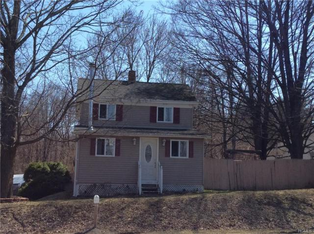 2052 State Route 32, Modena, NY 12548 (MLS #4816280) :: Mark Boyland Real Estate Team