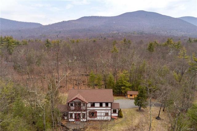 3 Hillman Road, Woodstock, NY 12498 (MLS #4816291) :: Mark Boyland Real Estate Team