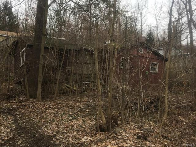 5 Pioneer Trail, Monroe, NY 10950 (MLS #4816647) :: William Raveis Baer & McIntosh