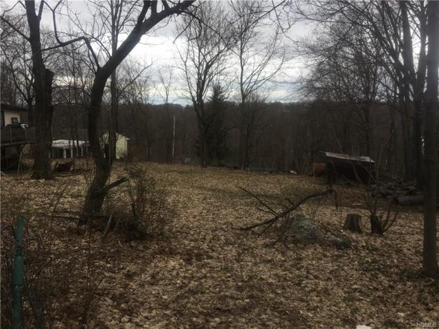 Arcadian Tr. Trail, Blooming Grove, NY 10914 (MLS #4816651) :: Shares of New York