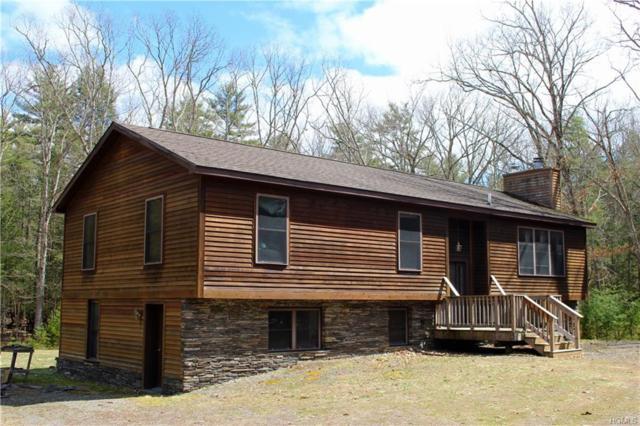 918 Queens Highway, Accord, NY 12404 (MLS #4816696) :: Mark Boyland Real Estate Team