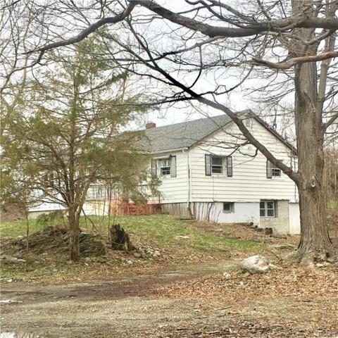 2117 Route 82, Lagrangeville, NY 12540 (MLS #4817120) :: Mark Boyland Real Estate Team