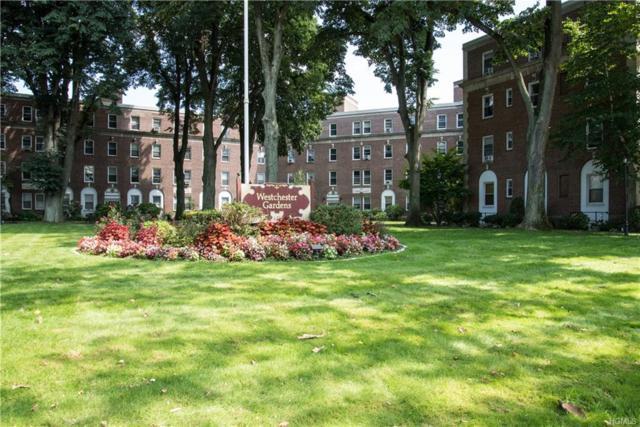 445 Gramatan Avenue Ac3, Mount Vernon, NY 10552 (MLS #4817190) :: Mark Boyland Real Estate Team