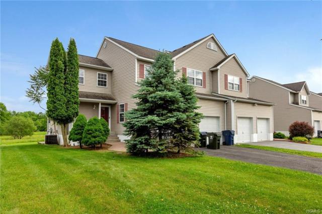 21 Mclaughlin Way, Washingtonville, NY 10992 (MLS #4817234) :: William Raveis Baer & McIntosh