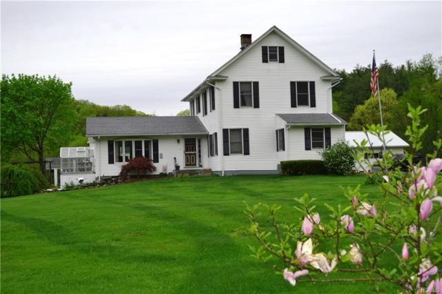 6-8 Sabre Lane, Pleasant Valley, NY 12569 (MLS #4817239) :: William Raveis Legends Realty Group